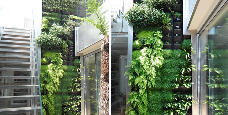 Green wall marseille landscape architect thomas gentilini design garden la - Mur vegetal exterieur ...