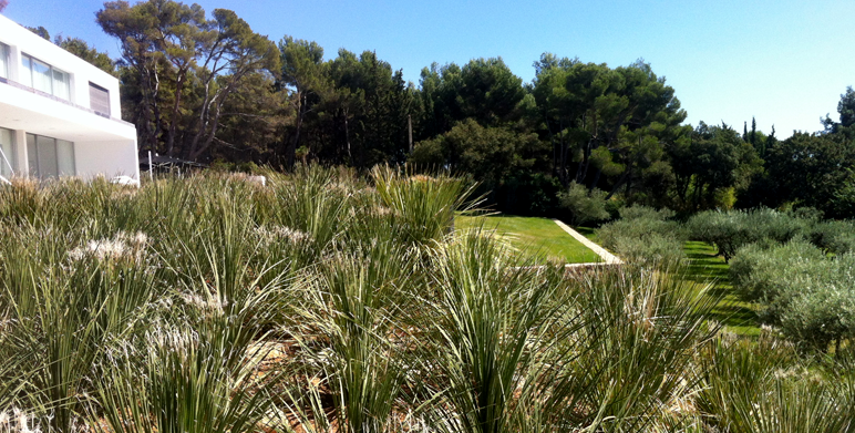 Jardin contemporain architecte paysagiste thomas - Creation jardin mediterraneen saint paul ...
